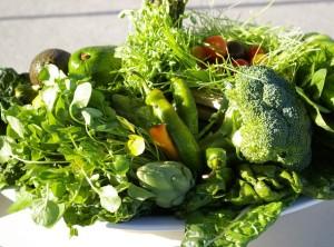 Top-10 samyh poleznyh zelenyh ovoshhej